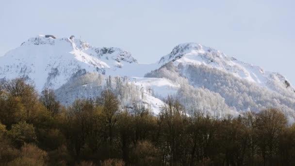 Panoramatický pohled na vrcholky zasněžených hor. Les na úpatí hory. Příroda