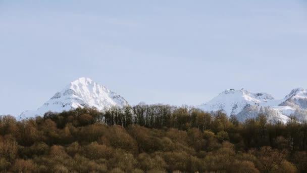 Panoramatický pohled na zasněžené vrcholky. Les na úpatí hory. Příroda. modrá obloha