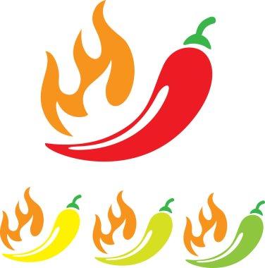 vector chilli pepper icon on white