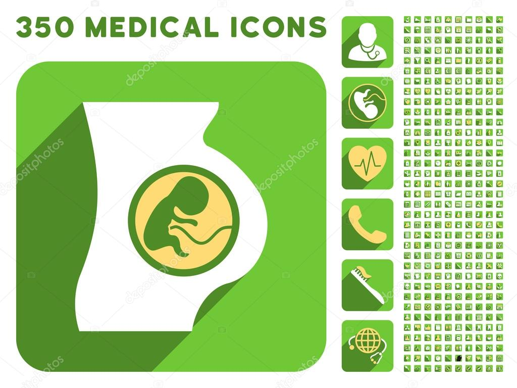 Pregnant Woman Anatomy Icon And Medical Longshadow Icon Set Stock