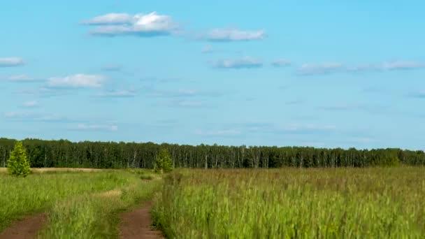 Temelapse zelené louky a jasně modré obloze