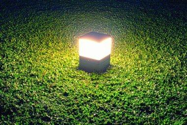 Lamp on Grass Night Scene