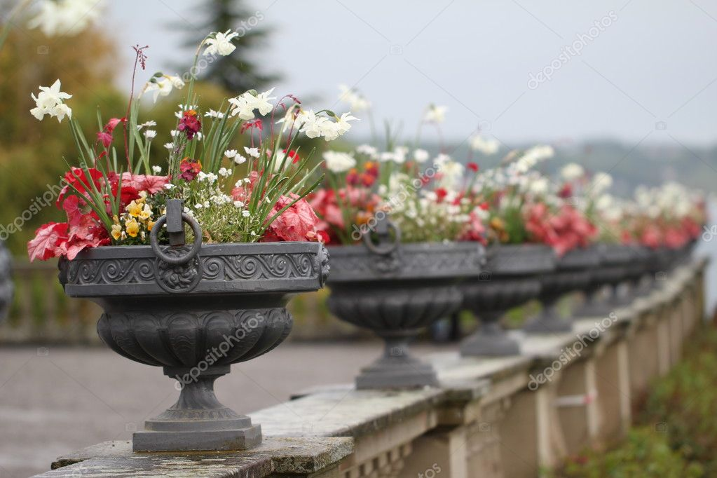 Beautiful Decorative Vases With Flowers Stock Photo Malleo
