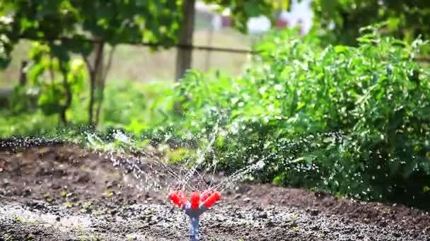 zalévání zahrady zařízení