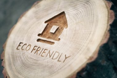 Ecological theme, eco-friendly house. eco construction. a family