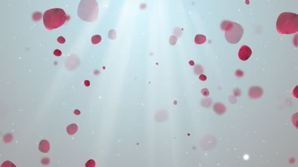Clean Rose petals 1 Loopable Background