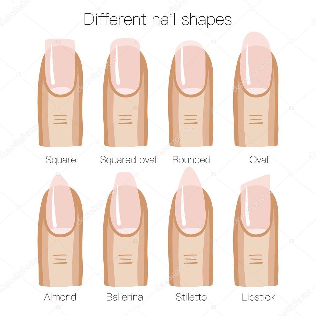 set of different shapes of nails stock vector merion merion 97775836. Black Bedroom Furniture Sets. Home Design Ideas