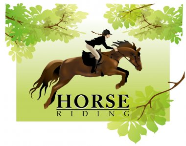 Horse Rider Woman. Equestrian Sport. Realistic vector illustration