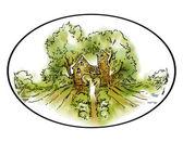 Fotografia Fatto a mano di schizzo vigneti e campi di uva