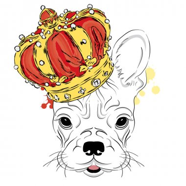 French Bulldog in the crown. Vector illustration. King. Print for clothes, cards or posters.