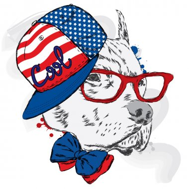 Pitbull in cap and tie. Dog vector.