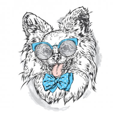 Cute puppy wearing a sunglasses. Vector illustration. Beautiful dog. Picture for a card, poster or print on clothes.