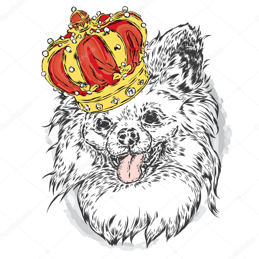 Cute puppy wearing a crown. Vector illustration for greeting card, poster, or print on clothes. Fashion & Style. Vintage. Beautiful dog.