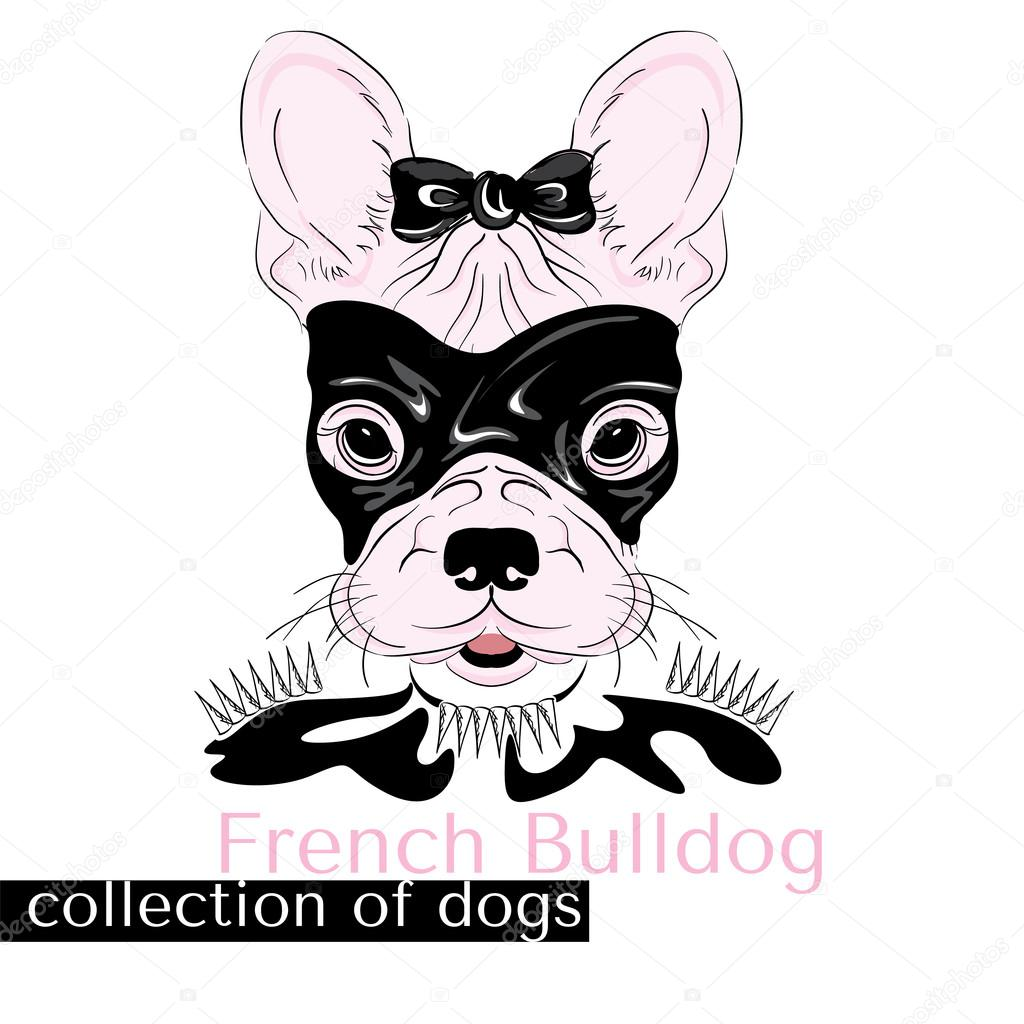 Collection of purebred dogs in vector. Hand drawing . French Bulldog ...