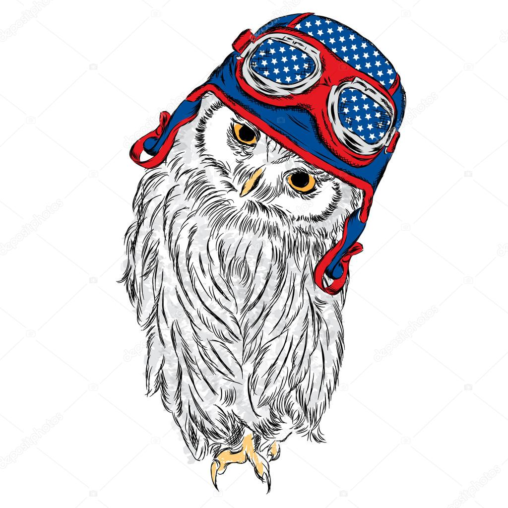 Cute owl wearing a helmet  Bird vector  Vector illustration