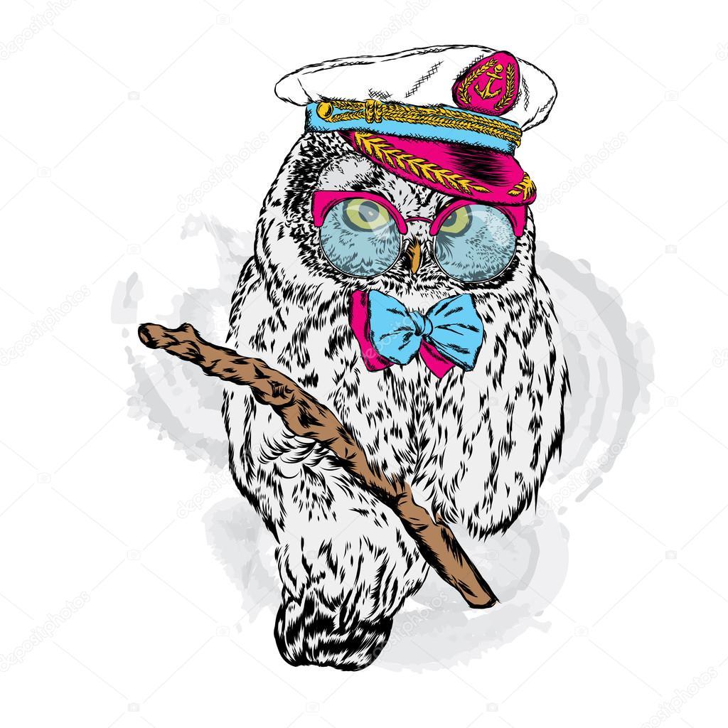 515e077391a Roztomilý sova v kapitánské čepice