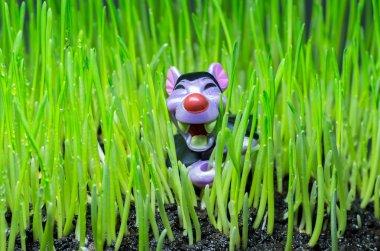 Children's toy in the grass