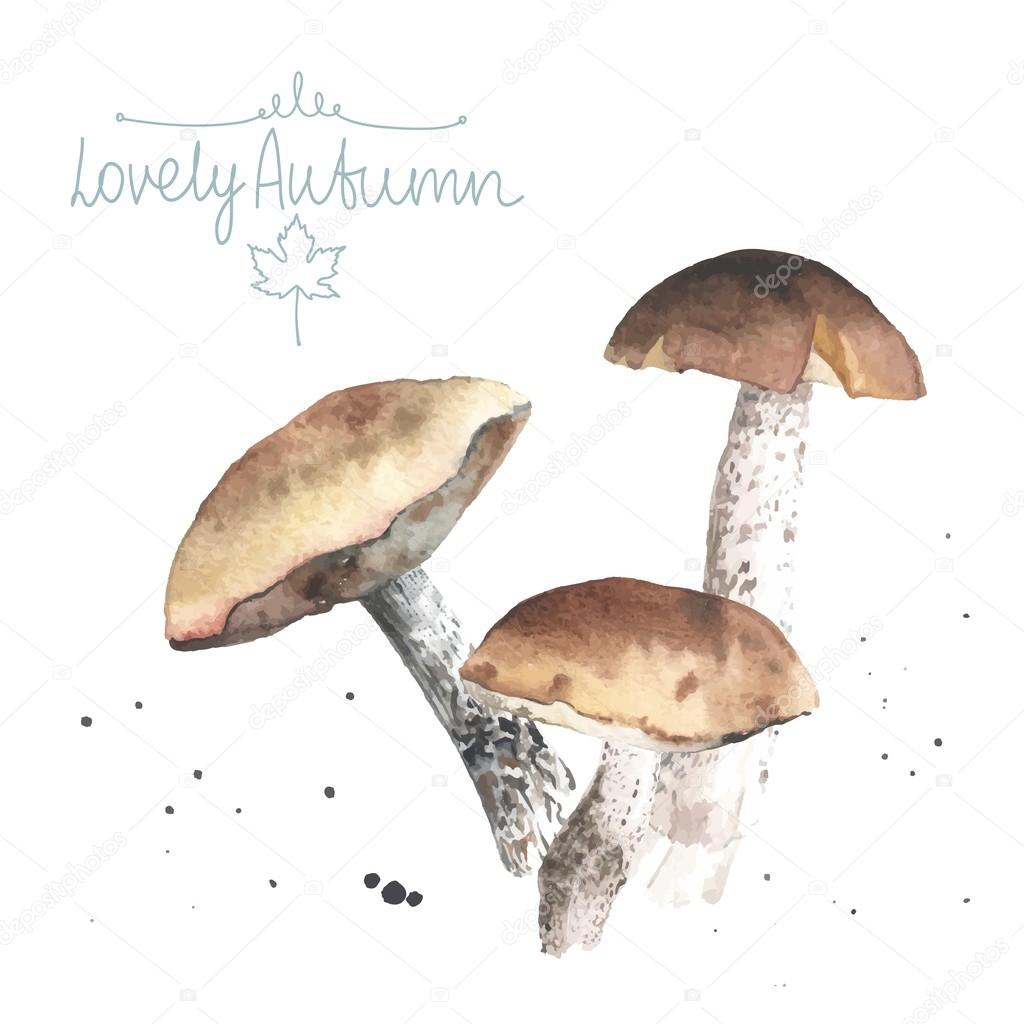 lovely autunm mushrooms