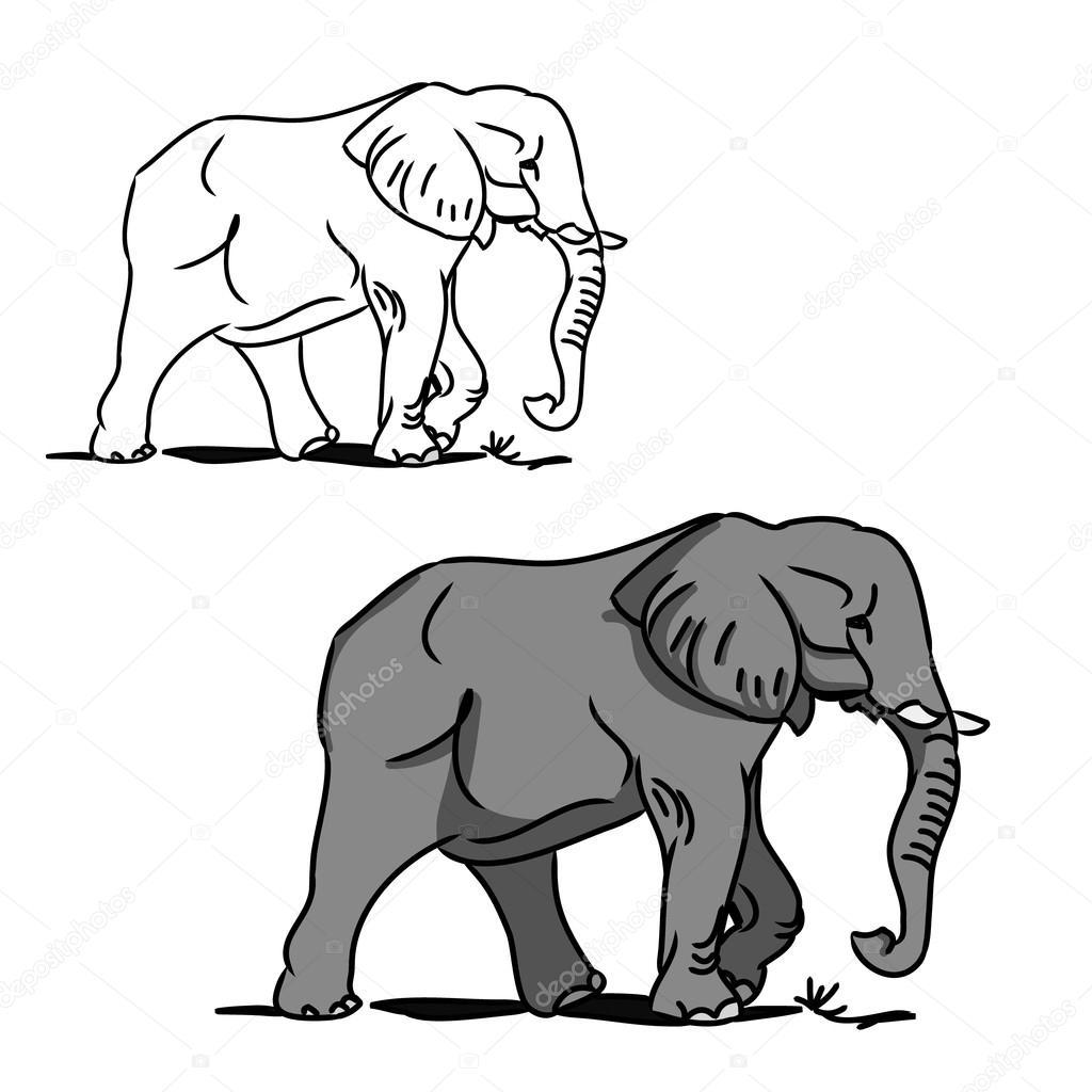 Gris Elefante Grande Para Colorear 0 Vector De Stock Milaendo