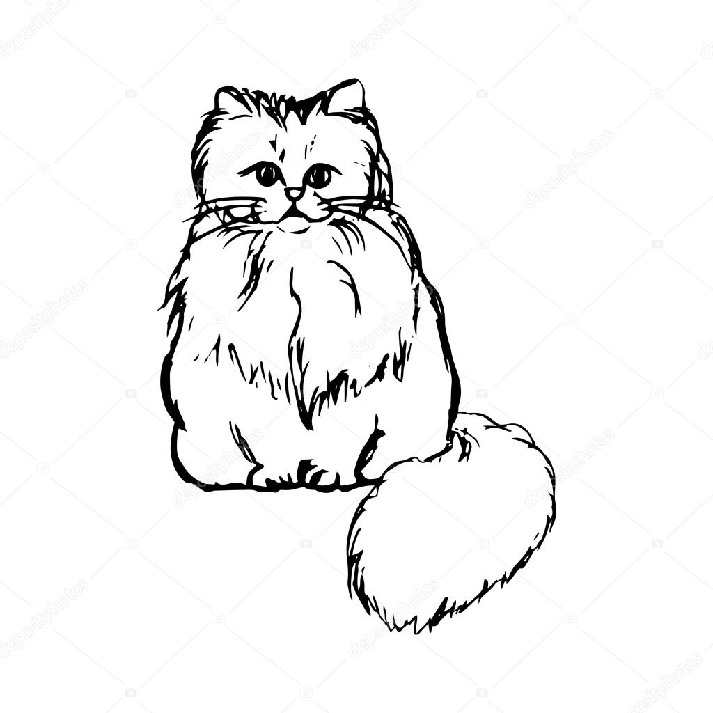 how to draw a fluffy cat tail