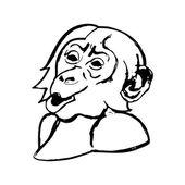 Opičí hlava (div) - šimpanzi