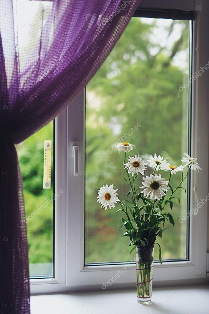 Beautiful bouquet of camomile flowers on the window