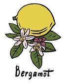 Bergamot ovoce