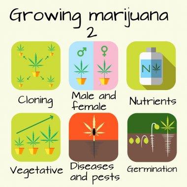 Marijuana growing set
