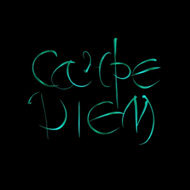 Carpe diem. Latin translation seize the moment. Hand-lettering calligraphy.