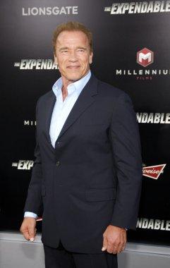 Actor Arnold Schwarzenegger