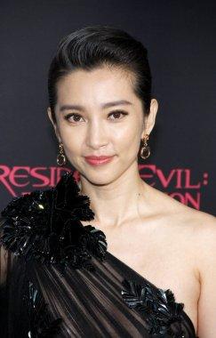 actress Li Bingbing
