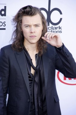 singer Harry Styles