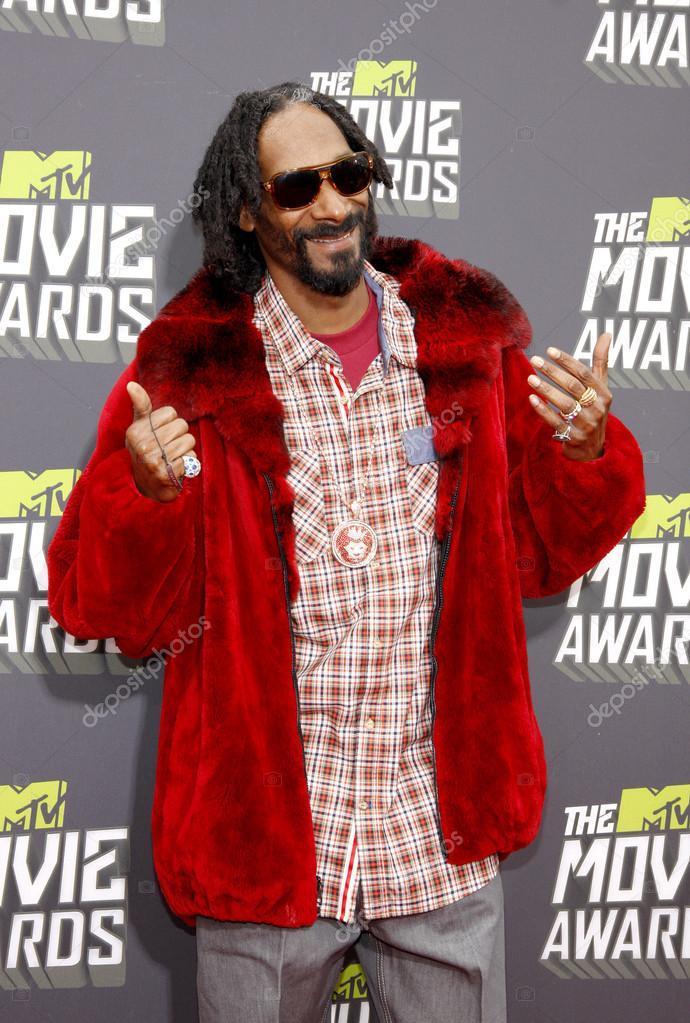 Σχετική εικόνα  10 Θρυλικοί Hip-Hop καλλιτέχνες οι οποίοι δεν έχουν κερδίσει ποτέ Grammy!! depositphotos 97304660 stock photo rapper snoop dogg
