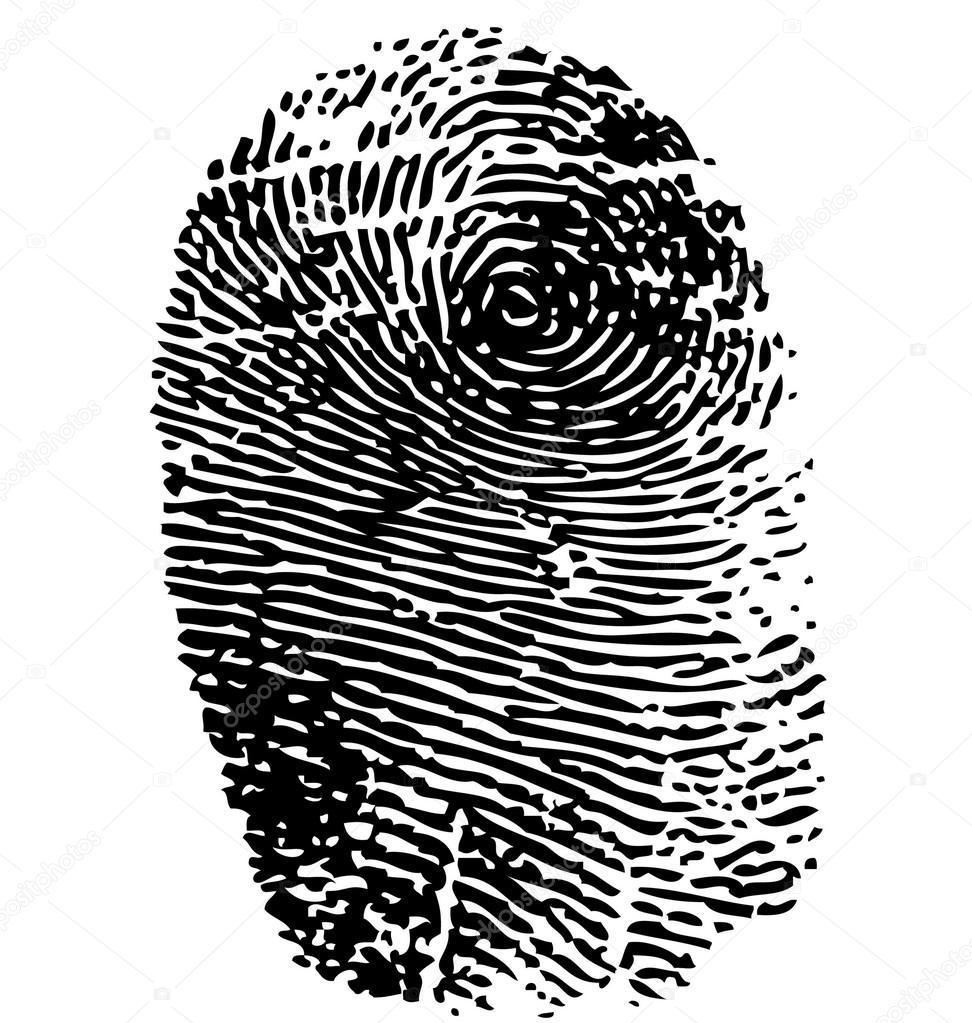 Verzauberkunst Bild Fingerabdruck Foto Von Fingerabdruck-vektor Isoliert Auf Weiss — Vektor Von