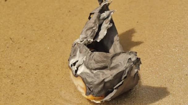 Spálený papír loď omýt na břeh vodnaté povrch sny to ne přijít pravda ztratil naděje smrti katastrofa papíru lodi na moře řeka v slunečný den Sandy dole
