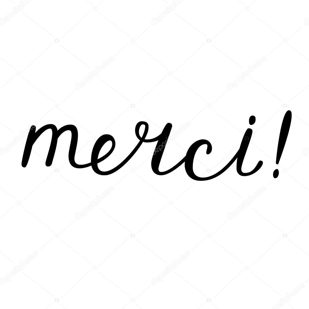 merci  thank you in french brush hand lettering stock calligraphy vector free calligraphy vector free