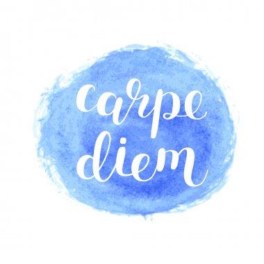 Carpe diem. Seize the day. Brush lettering.