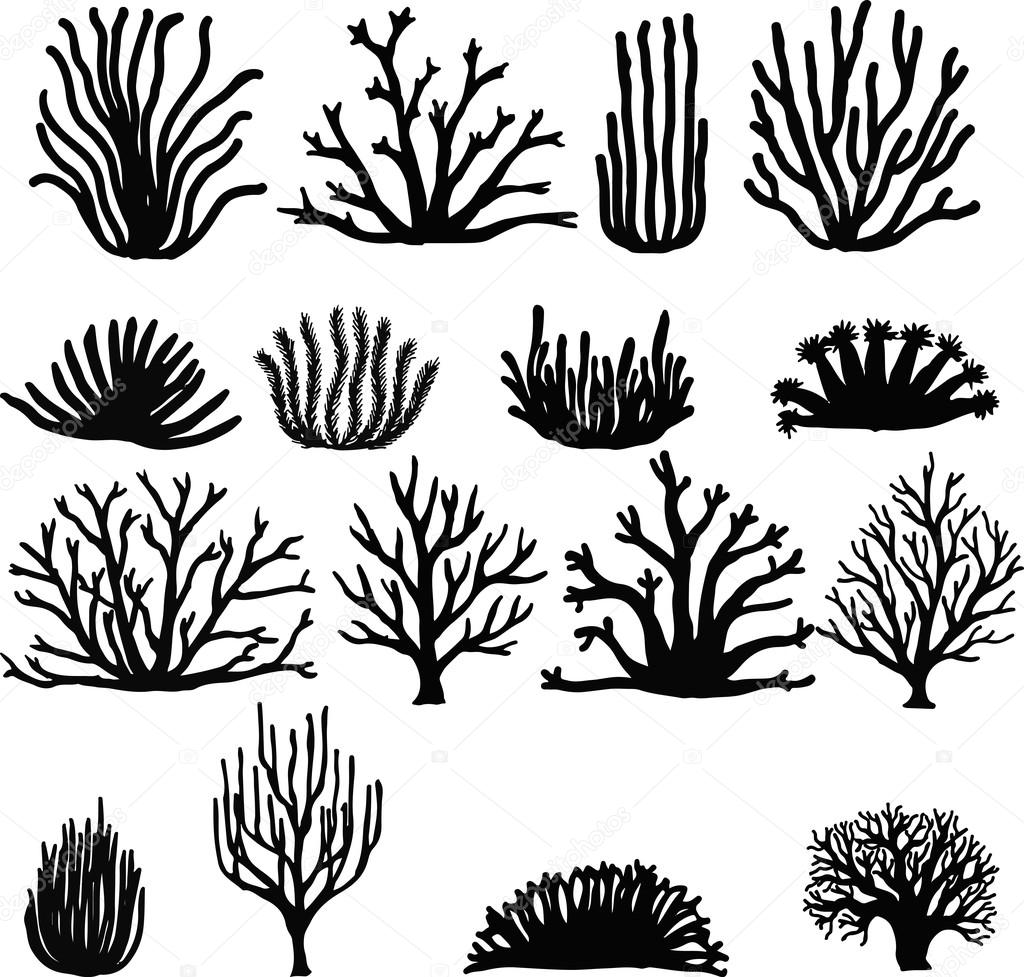 Hand drawn corals isolated on white. Silhouette icons.