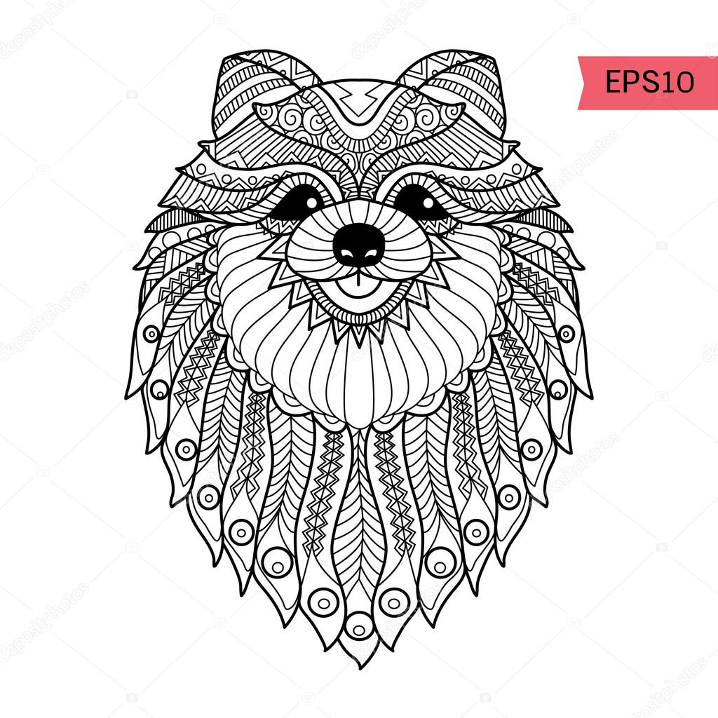 hand drawn zentangle pom dog background for coloring page u2014 stock
