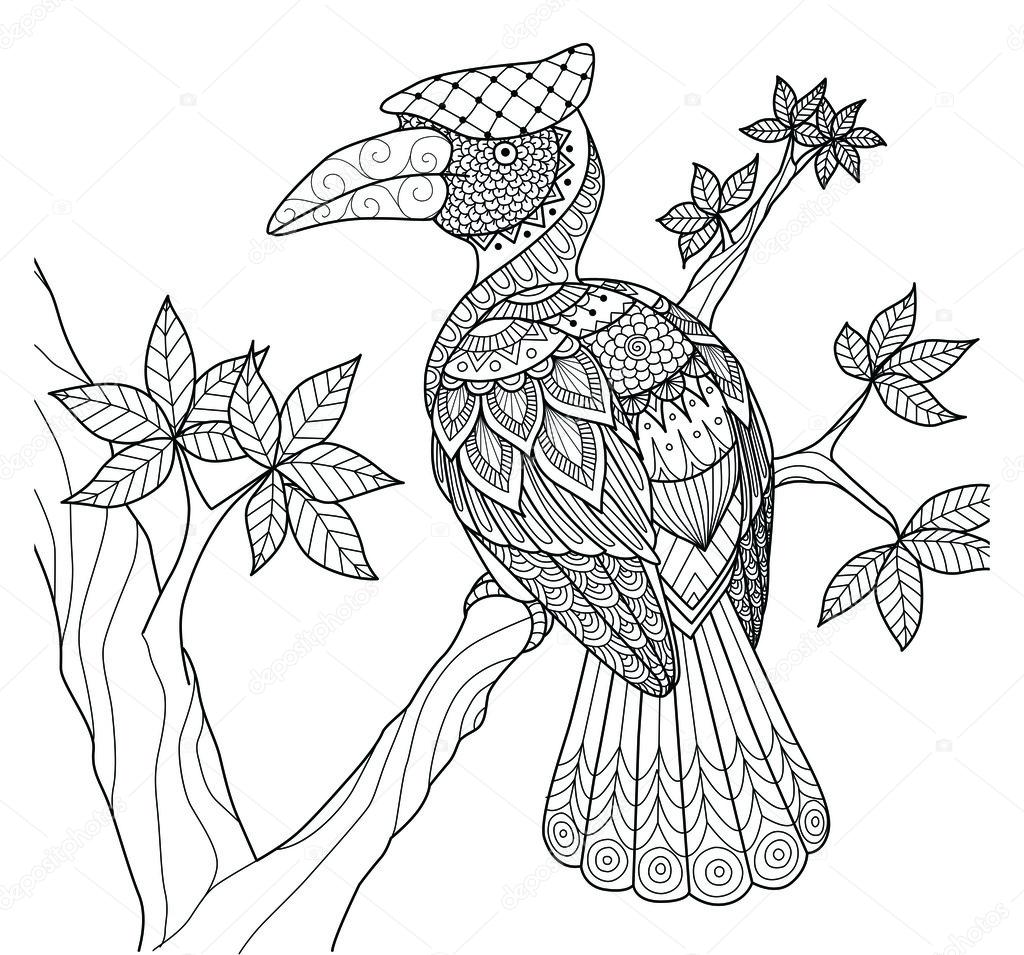 Pájaro Cálao en el diseño de zentangle de árbol para colorear libro ...