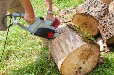 Cutting wood with chain saw