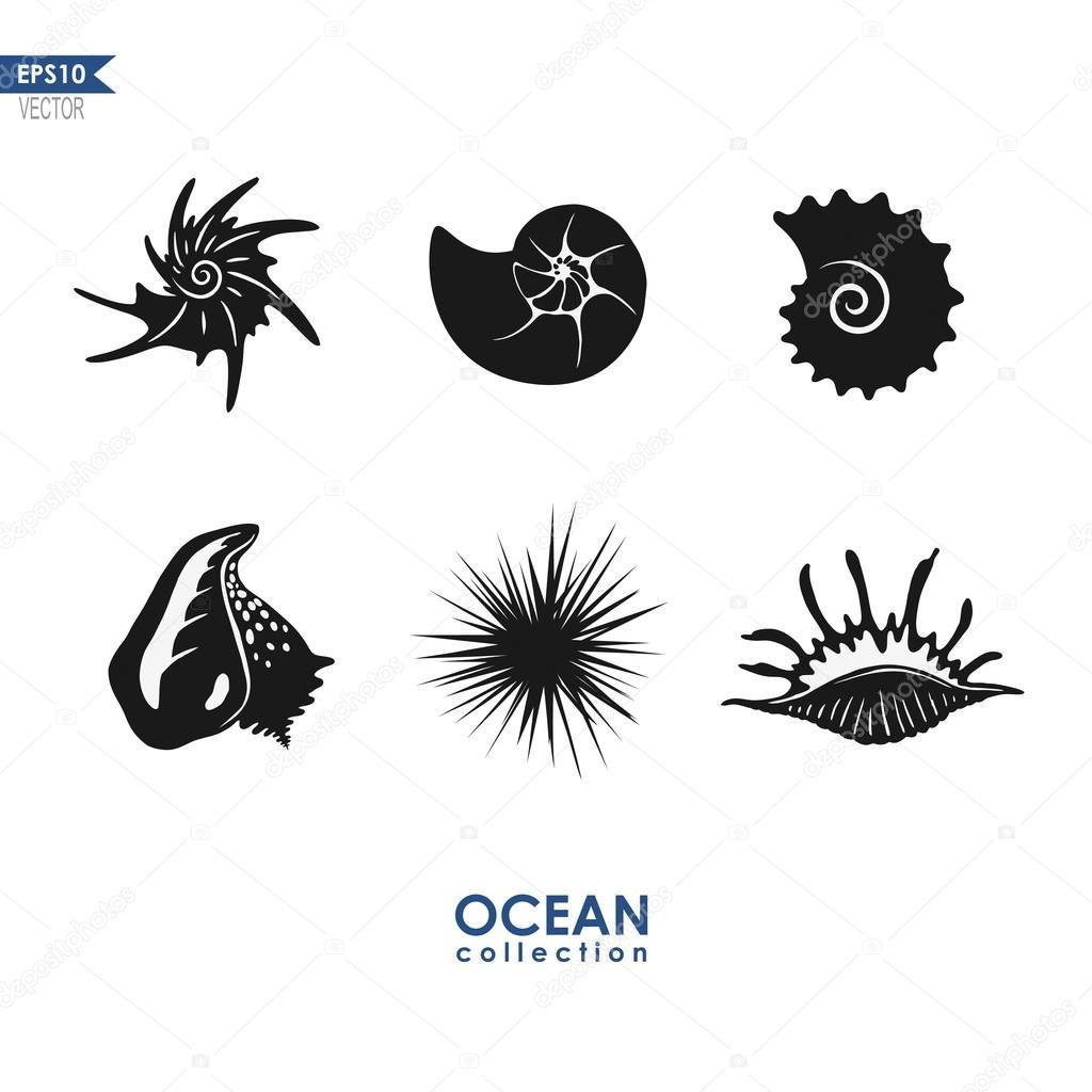 ocean creatures sea snails shells mollusks u2014 stock vector