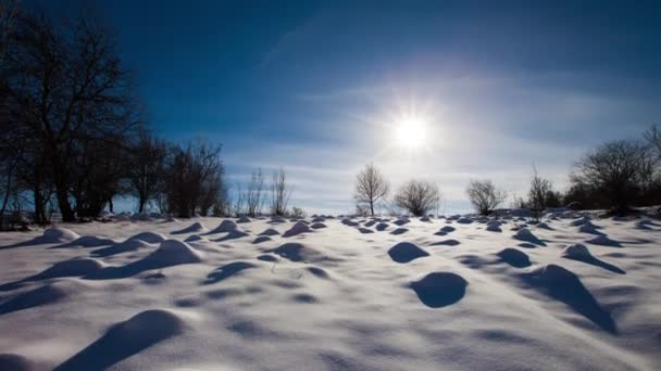 anthills under the snow video timelapse. sun shining. the sun shines on anthills
