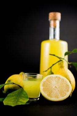Italian alcoholic beverage, Limoncello.
