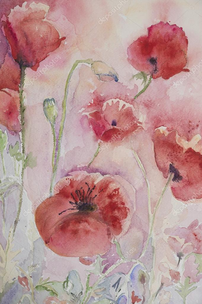 Several poppies with pink and yellow background