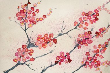 Cherry blossoms on a tinted background