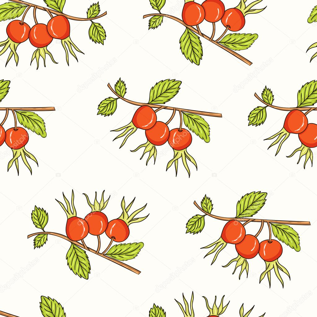 Dogrose Seamless Pattern. Collection of berries.