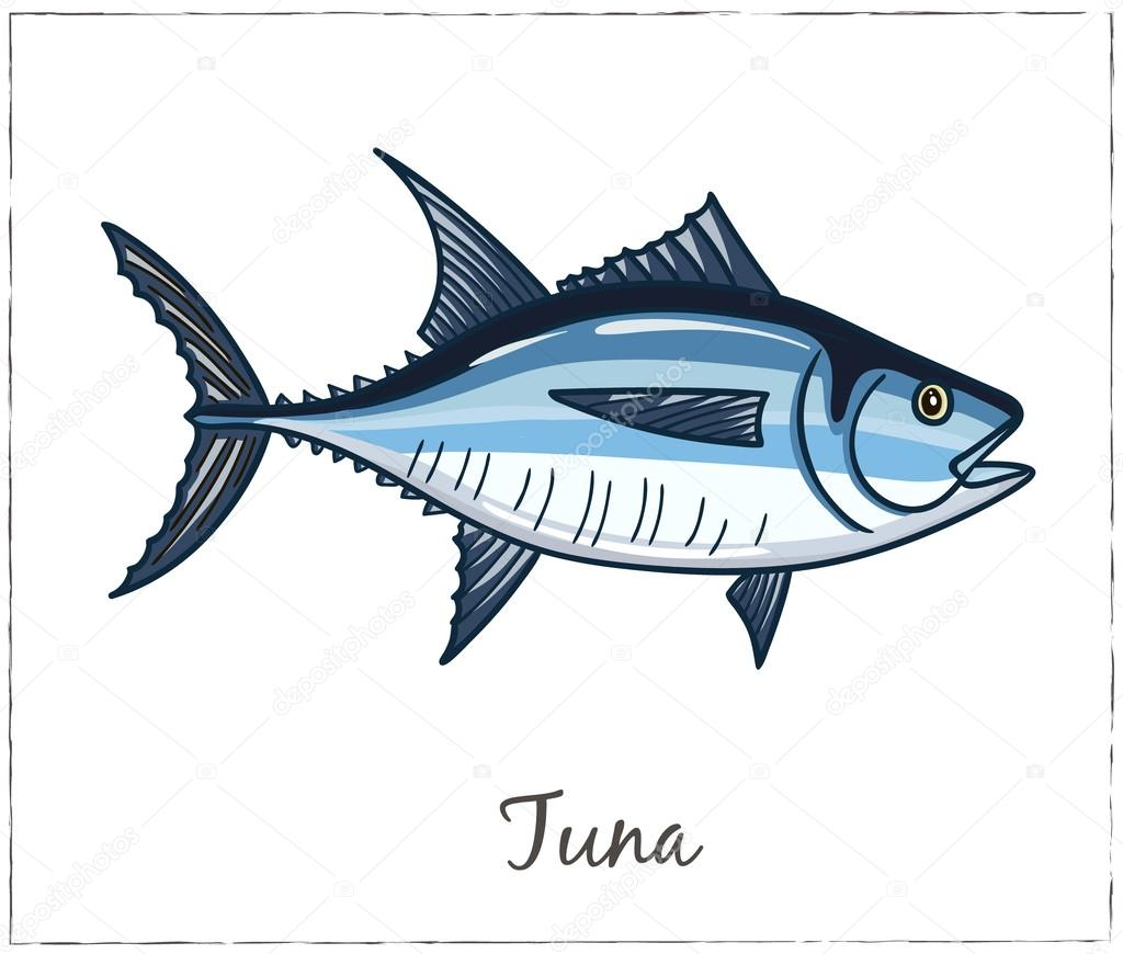 Tuna. Fish collection. Vector illustration