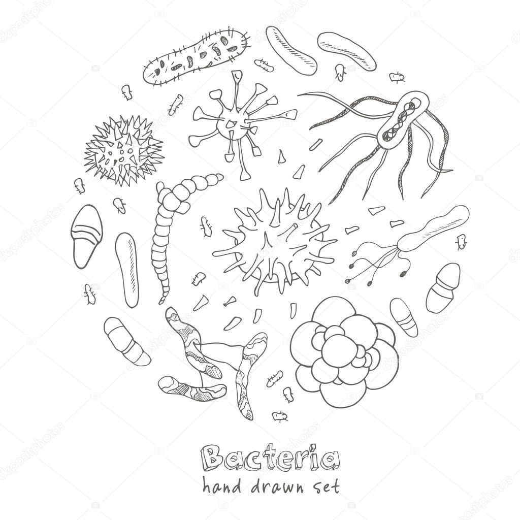 Como Dibujar Una Bacteria Para Niños Bacterias Virus Los Iconos