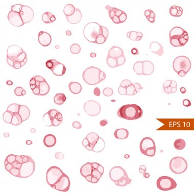 Vector set of round wine stains. Various wine traces isolated on